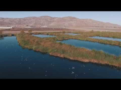 Wetlands Facility