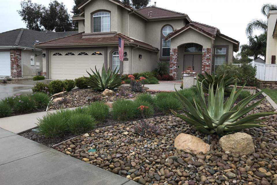 Yard with drought tolerant plants and river rock ground cover.
